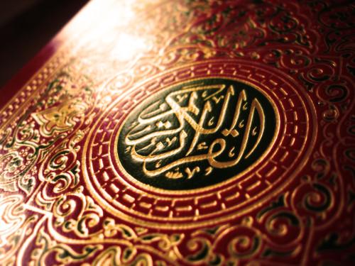 القرآن كريم - الورد اليومي