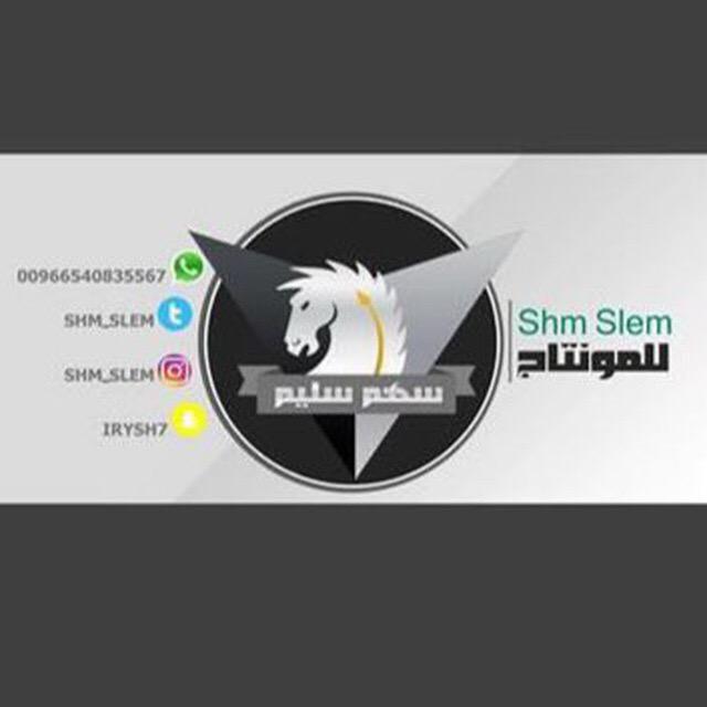 قناة | سهم سليم